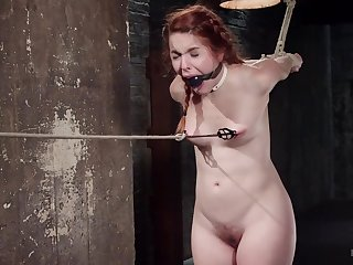 Small tits redhead Amarna Miller promised with the addition of tortured for your pleasure